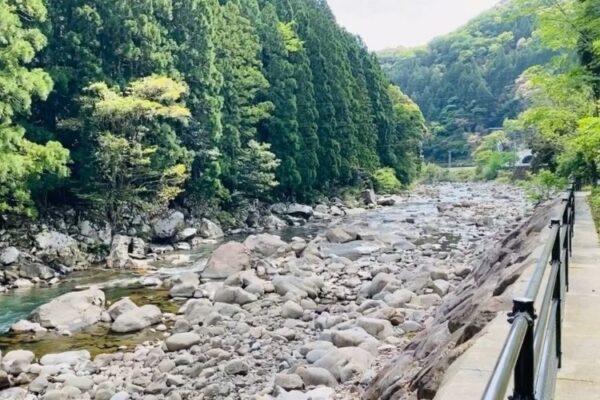 安田川あゆ踊る清流キャンプ場